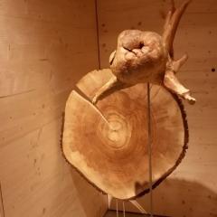 Mietkunst statt Holzkunst kaufen 04_BaumElfe