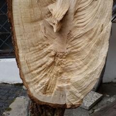Mietkunst statt Holzkunst kaufen 21_EicheEngel2