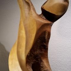 Mietkunst statt Holzkunst kaufen 31_Himmelsgucker
