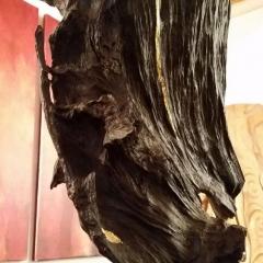 Mietkunst statt Holzkunst kaufen 46_Phoenix