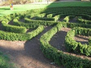 Holskunst-Seminar-im-Kloster-Hoechst Atelier-Labyrinth